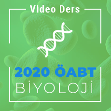 2020 Biyoloji ÖABT - Video Ders Paketi